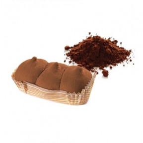 Gâteau PlumCake Cacao Start FeelingOk 45g