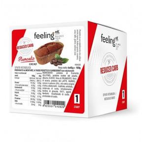 Bizcocho PlumCake Cacao Start FeelingOk 180g