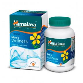 Tribulus Men's Wellness Himalaya 60 gélules