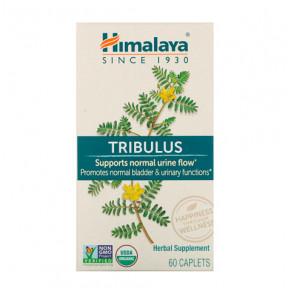 Tribulus Himalaya 60 cápsulas